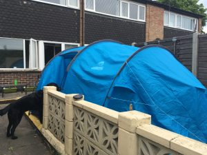 Image shows side view of tent with door panel open, against the low garden wall and with Guide Dog Fizz looking inside