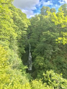 Photograph of small waterfall in the middle of trees and bushes, taken from the waterfall lookout opposite