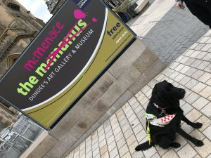 Photograph of the graffitied museum sign taken on an angle with guide dog Fizz sat in front of it.