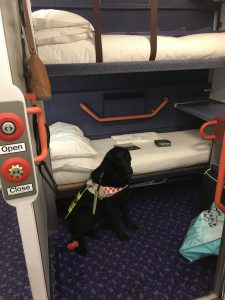 Photograph from the open electronic door on my berth, showing the open and close panel on the left, Fizz sat in front of the single bed which has an orange hand rail and a top bunk bed that is seen at the top of the picture