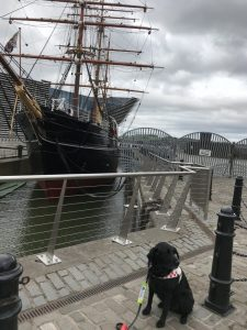 Photograph of Fizz sitting in front of The RRS Discovery on the dock side